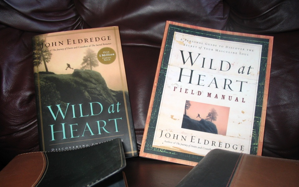 eook reports essays on wild at heart by eldredge Wild at heart: discovering the secret of a man's soul mp3 cd wild at heart so much of what eldredge captures in wild at heart is relevent to my life's.