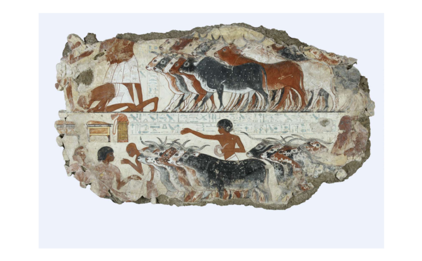 Treasures of Ancient Egypt Day 6 – Counting the cows